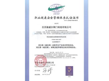管理體系認證證書中文
